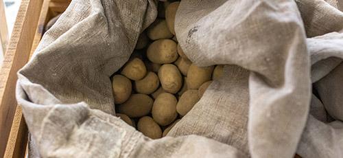 Kartoffeln aus biologischem Anbau
